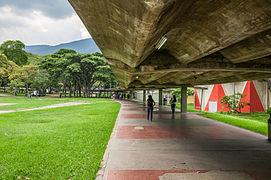 Pasillos_de_la_Universidad_Central_de_Venezuela